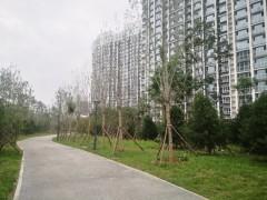 (菏泽)文心花园3室2厅1卫105m²豪华装修