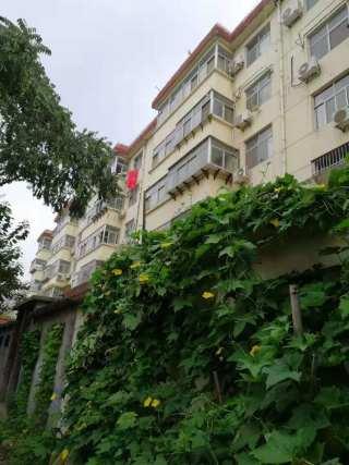 (菏泽)匹克国际花园南邻3室2厅1卫